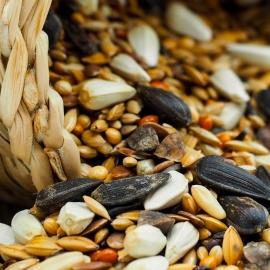 Flanquart si lancia sul mercato dei semi alimentari senza allergeni
